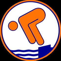 Schwimmabzeichen Bronze